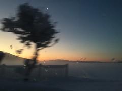 here comes the sun (j.spiridigliozzi) Tags: fog mist morning mountain snow winter japan drive road sunrise