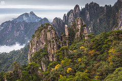 HuangShan Peaks in Clouds (lycheng99) Tags: huangshan peaks clouds rocks rockformation trees color nature landscape visibility horizon pines pinetrees china chinatravel anhui highmountains mountains