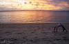 Cacha-Pregos/Ba - Brasil (AmandaSaldanha) Tags: nature natureza sunset pôrdosol ilha island summer verão landscape paisagem paisaje woman ensaio book yoga bahia brasil cachapregos