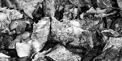 Guess what we cooked (Traveller_40) Tags: bw blackwhite blackandwhite macro macroflash macrolicious makro monochrome nb noirblanc noiretblanc prime primelense yn24ex yongnuo biancoenero blancoynegro closeup coocking details food monocromático pretoebranco primelesne skin twinflash 单色 白黒 grundnahrungsmittel stärke