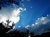 Sun rays (picturesque-y) Tags: crepuscularrays sunrays lights sky bluesky cloud sunbeams cloudbreaks tree blue japan