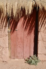 Thatched roof building in Machuca (davidparratt) Tags: thatchedroof machuca atacama chile