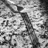 Shadow (tim.perdue) Tags: shadow fork utensil countertop marble pattern minimalism light square monochrome black white bw instagram sunlight reflection iphone mobile iphoneography se iphonese apple cameraphone kitchen