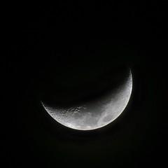 Where is Starman? (PeterThoeny) Tags: cupertino sanjose california siliconvalley sanfranciscobay sanfranciscobayarea moon waxingmoon night sony a6000 sonya6000 tamron tamronsp150600mmf563 1xp raw photomatix hdr qualityhdr qualityhdrphotography fav100 lunar
