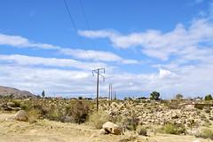 Joshua Tree, CA (DClemm) Tags: joshuatree desert california sky