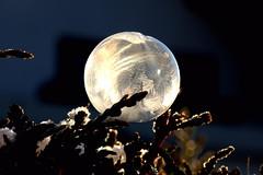 frozen bubble (Wackelaugen) Tags: frozen bubble ice snow winter jewel canon eos photo photography wackelaugen