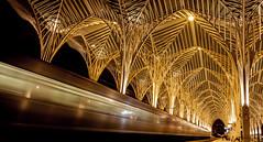 (Evelien Gerrits) Tags: longshutterspeed train gold linesandcurves lisbon lisboa lissabon trainstation station architecture oriente estacaooriente