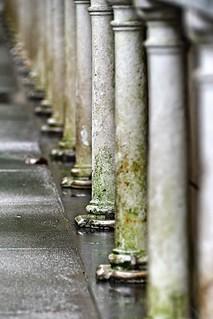 Pillars, Palm House, Kew Gardens