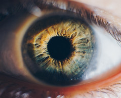 DSC06550_2 (Roland Papp) Tags: eye eyes macro macroworld macroshot macroporn sonymacro sonyalpha6000 sonya6000 sonyalpha sony sigma30mmf14 sigma30mm