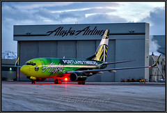 N607AS Alaska Airlines - Portland Timbers (Bob Garrard) Tags: anc panc boeing 737 737700 737790 n607as alaska airlines portland timbers special livery