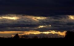 Coucher de soleil en Petite Camargue - IMG_2231 (6franc6) Tags: occitanie languedoc gard 30 petitecamargue janvier 2018 6franc6 explore coucherdesoleil
