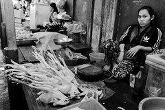Chicken, chicken* (gergelytakacs) Tags: adidas angkor asia cambodge cambodia fareast kampuchea khmer kingdomofcambodia oldmarket psarchas siemreap animal bw blackandwhite butcher bystander calle candid carcass chicken city confront dead documentary flâneur food gawk girl glare grocery legs look meat merchant monochrome photo photography poultry public rue space stare strada stranger strasenfotografie street streetphotographer streetphotography streetphotgraph streetphotgrapher streetphotgraphy streetphoto streets streetscape tracksuit travel ulica unposed urban urbanphoto urbanphotographer urbanphotography utcafotó улица רחוב ក្រុងសៀមរាប ផ្សារចាស់ ព្រះរាជាណាចក្រកម្ពុជា