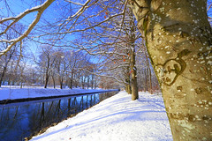 Forever.. (annemwo) Tags: heart winter february valentine horten norway outdoor canal water landscape snow