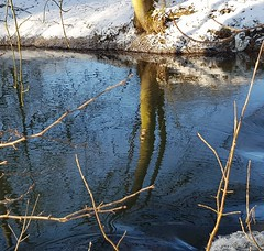 Swimming in blue water (:Linda:) Tags: germany thuringia town hildburghausen park werra river reflection snow tree