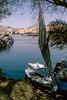 Felucca on the Nile, Aswan (bruno vanbesien) Tags: aswan egypt misr boat desert river أسوان eg