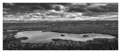 Norderney, Salt-Wet-Grassland #2 (Wayne Interessiert's) Tags: norderney naturereserve landscape paysage wolken clouds nuages sky ciel monochrome bw blackwhite noirblancphoto minimalismus minimalisme insel island île