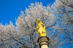 golden Madonna (werner boehm *) Tags: wernerboehm raureif hairfrost madonna
