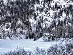 171224-16 Le chalet de la montagne (clamato39) Tags: chalet camp lake lac latuque neige snow hiver winter montagnes mountains nature paysage provincedequébec québec canada