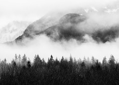 Hanging In The Balance Of Things (John Westrock) Tags: blackandwhite nature landscape clouds trees snoqualmie washingtonstate pacificnorthwest canoneos5dmarkiii canonef100400mmf4556lisusm mountains