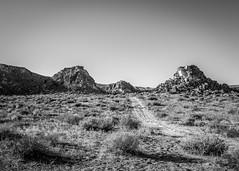 Desert Road (dwblakey) Tags: hike landscape desert closeup bishop mountains monocounty wandering rocks california rockpile monochrome easternsierra hiking outside outdoors bw blackandwhite volcanictableland volcanictablelands exploring unitedstates us