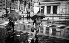 Roma - 2017 (davide978) Tags: roma street canon italy italia davide978davidecollidavide collicanonitalyitaly signora con lombrello signoraconlombrello strada history wet rain pioggia donna woman mg2001 davide978 2017 ef 35mm f2 is usm canonef35mmf2isusm secchio