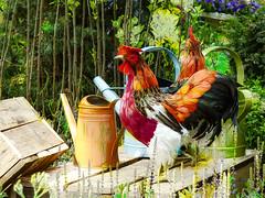 The Watering Can Strut (Steve Taylor (Photography)) Tags: bird chicken cockerel cock art digital sculpture wooden asia singapore box flowerdome gardensbythebay wateringcan heather