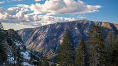 View from Bear Valley (San Francisco Gal) Tags: bearvalley snow mountain peak conifer tree cloud sky horsevalley ridge rock sierranevada stanislausforest