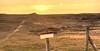 No access. (Alex-de-Haas) Tags: 1635mm d750 hdr holland hollandseluchten julianadorp nederland nikkor nikon noordholland noordkop thenetherlands clearskies cloudless duinen duingebied dunes goldenhour grijzeduinen landscape landschap lucht onbewolkt scenery sereen serene skies sky sun sundown sunset unclouded unshadowed zon zonsondergang