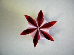 Rosette - Ekaterina Lukasheva (Rui.Roda) Tags: origami papiroflexia papierfalten flor fleur flower modular rosette ekaterina lukasheva