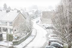 Snow covered street (WillemijnB) Tags: snow sneeuw hengelo overijssel januari january janvier winter hiver white whiteout snowstorm storm winding wind road street straat twente weather meteo weer wit blanc neige snee houses huizen maison