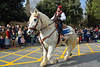 Tres tombs @ Sant Cugat (vdbdc) Tags: cavall caballo horse sant cugat antoni tres tombs