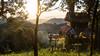IMG_1646 (Aelred85) Tags: canon600d sigma1750mmf28exdcoshsm jungle burma myanmar shanstate treehouse mrbike hsipaw