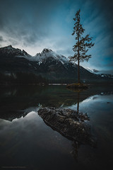 The lonely tree... (agialopoulos) Tags: rot hintersee germany landschaft landscape lake natur nature snow mountain tree