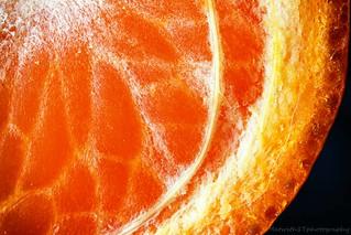 Orange-4 IMG_8265-1