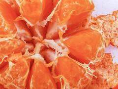 Oh My Darling! (DeanoNC) Tags: gx80 orange fruit macro clementine citrus macromondays
