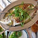 Cá Hấp Bánh Tráng thumbnail