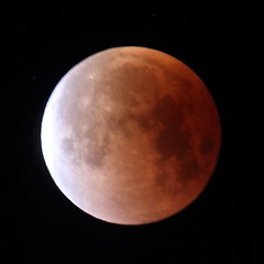 Super, Blue, Blood Moon (jlcummins - Washington State) Tags: moon superbluebloodmoon sky tamronsp150600mmf563divcusd canon celestial coth5