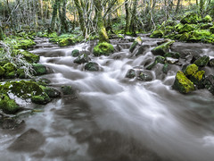 Barciademera. (LUIS FELICIANO) Tags: barciademera rio bosque agua corriente rocas verde arboles naturaleza airelibre exterior olympus e5 lent1122mm galicia españa