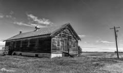Abandoned on Prairies (Paul Berkloo) Tags: linden alberta canada ca blackandwhite bw building hydro old abandoned monochrome field cabin grass sky