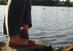 Gigi (3999) (Duke of Slippers) Tags: ballet slippers shoes flats pumps soft soles souliers pantoufles panofole scarpe ballerines ballerinas