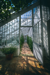 The Greenhouse (nigdawphotography) Tags: greenhouse garden gardening plants audleyend essex