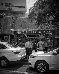 Taxistas. São Paulo, 2017 / Cab Drivers. São Paulo, 2017 (Pablo_Grilo) Tags: monochrome monocromatico blackandwhitepic blackandwhitephotography blackandwhitephoto blackandwhite bw pb noir fotografiapb fotografiaempb fotografiapretoebranco fotografiaempretoebranco fotopretoebranco fotoempretoebranco pretoebranco street streetpic streetphoto streetphotography streetphotographers fotografiaderua fotografosderua fotoderua rua ruas brasil brazil iphone6 saopaulo sp 011