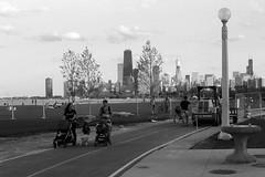 On Your Left.jpg (Milosh Kosanovich) Tags: fullertonavebeach forklift underconstruction cityscape minoltax700 film lakefrontpathdoublestrollers vintagefilm epsonv750pro bikepath chicago miloshkosanovich chicagophotographicart kodaktmaxrsdeveloper chicagophotoart kodaktmax100 chicagophotographicartscom mickchgo bwfilm