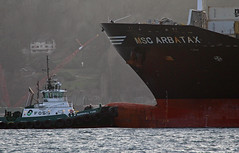 6806_MSC ARBATAX_Marshall Foss (lg evans Maritime Images) Tags: maritimeimages ©lgevans lgevans lge mscarbatax marshallfoss foss msc cargo container tug tugboat bow assist escort water portofseattle elliottbay seattlewa