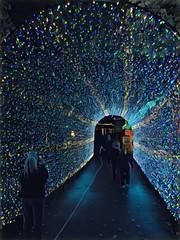 Time Travelers (Pejasar) Tags: artistic art park missouri silverdollarcity christmas lights tunnel people travel time painterly digitalcreations paintcreations