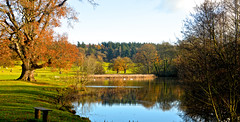 SOMEWHERE TO SIT (chris .p) Tags: nikon d610 view herefordshire england winter 2017 capture uk nt november reflections nationaltrust landscape berrington seat
