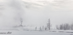 Surreal Landscpe (maureen.elliott) Tags: mist steam geyser monochrome landscape yellowstonenationalpark wyoming winter nature earlymorning