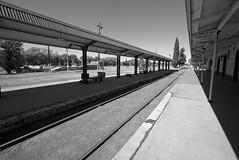 Estacion de General Pico (galoware) Tags: tren train estacion station ferrocarril railroad rieles argentina lapampa generalpico ffcc bw byn