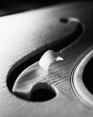 Curl (emanuele_f) Tags: violin violino violinmaking liuteria handmade italia mamiya mamiyapress rangefinder 6x7 mediumfomat sekor 100mm ilford panf rodinal blackandwhite film pellicola analogica