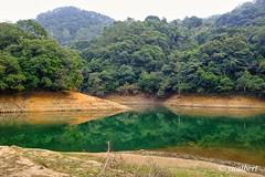Shing Mun Reservoir, Hong Kong (yualbert) Tags: fuji fujifilm x100 100f photography snapshot candid hongkong forest landscape tree water reflection